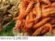 Купить «Креветки», фото № 2246003, снято 5 ноября 2010 г. (c) Гордина Алёна / Фотобанк Лори