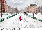 Купить «После ледяного дождя. Городской пейзаж», фото № 2248635, снято 26 декабря 2010 г. (c) Parmenov Pavel / Фотобанк Лори