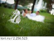 Свадебное фото. Стоковое фото, фотограф Алексей Цыганко / Фотобанк Лори