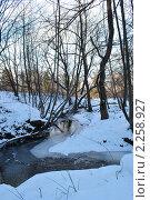 Зимний лес и речка. Стоковое фото, фотограф Юлия Желтенко / Фотобанк Лори