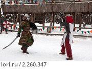 Купить «Рыцарский турнир в Туле», эксклюзивное фото № 2260347, снято 5 января 2011 г. (c) ФЕДЛОГ / Фотобанк Лори