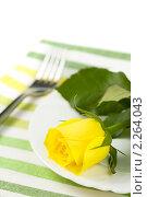 Купить «Желтая роза на тарелке», фото № 2264043, снято 4 марта 2009 г. (c) Наталия Кленова / Фотобанк Лори