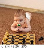 Купить «Гроссмейстер с соской», фото № 2264295, снято 16 августа 2018 г. (c) Иванюшин Виталий / Фотобанк Лори
