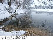 На зимнем пруду (2010 год). Стоковое фото, фотограф Терещенко Марина / Фотобанк Лори