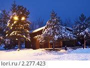 Купить «Зимняя ночь», фото № 2277423, снято 6 января 2011 г. (c) Игорь Долгов / Фотобанк Лори