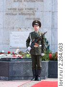 Купить «Почетный караул», фото № 2284603, снято 9 мая 2009 г. (c) Александр Подшивалов / Фотобанк Лори