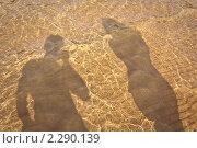 Купить «Тени двух человек на воде», фото № 2290139, снято 3 июля 2010 г. (c) Galina Zakovorotnaya / Фотобанк Лори