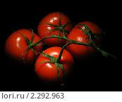 Четыре помидора не ветке на черном фоне. Стоковое фото, фотограф Екатерина Жукова / Фотобанк Лори