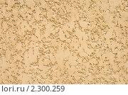 Купить «Текстура оштукатуренной стены, желтый цвет», фото № 2300259, снято 2 августа 2007 г. (c) Сахно Роман Викторович / Фотобанк Лори