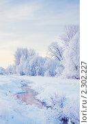 Купить «Зимний пейзаж», фото № 2302227, снято 6 декабря 2010 г. (c) Майя Крученкова / Фотобанк Лори