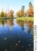 Осенний пруд. Стоковое фото, фотограф Дмитрий Куома / Фотобанк Лори