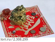 Жаба с монеткой. Стоковое фото, фотограф Александр Зубарев / Фотобанк Лори