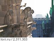 Купить «Собор  Нотр дам де Пари (Notre dame de Paris). Франция.», фото № 2311303, снято 21 октября 2010 г. (c) Николай Коржов / Фотобанк Лори