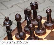 Купить «Шахматы», фото № 2315707, снято 4 сентября 2010 г. (c) Юлия Бобровских / Фотобанк Лори
