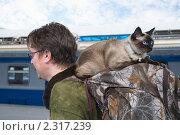 Бывалая путешественница. Стоковое фото, фотограф Недзельская Татьяна / Фотобанк Лори