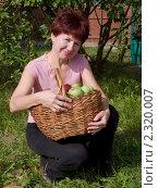 Купить «Дачница показывает яблоки нового урожая», фото № 2320007, снято 11 сентября 2010 г. (c) Коротнев Виктор Георгиевич / Фотобанк Лори