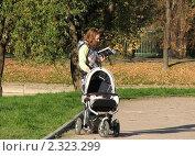 Купить «Молодая мама с коляской в парке читает книгу», эксклюзивное фото № 2323299, снято 8 октября 2010 г. (c) lana1501 / Фотобанк Лори