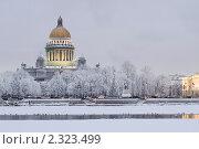 Купить «Сенатская площадь. Санкт-Петербург», эксклюзивное фото № 2323499, снято 15 января 2010 г. (c) Александр Алексеев / Фотобанк Лори