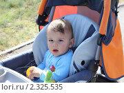 Купить «Малыш сидит в коляске солнечным днем», эксклюзивное фото № 2325535, снято 28 сентября 2010 г. (c) Олеся Сарычева / Фотобанк Лори