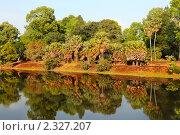 Купить «Вид на азиатские джунгли отражающиеся на поверхности озера около древнего храма Баконг», фото № 2327207, снято 13 декабря 2010 г. (c) Николай Винокуров / Фотобанк Лори