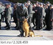 Купить «Милиционеры на Манежной площади, Москва», эксклюзивное фото № 2328459, снято 27 апреля 2010 г. (c) lana1501 / Фотобанк Лори