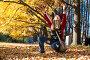 Осенний парк, фото № 2329363, снято 24 июля 2017 г. (c) Руслан Керимов / Фотобанк Лори