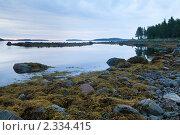 Купить «Белая ночь над заливом Белого моря», фото № 2334415, снято 4 июля 2010 г. (c) Михаил Иванов / Фотобанк Лори