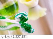 Продукты для гигиены зубов - зубная щетка с пастой и жидкость для полоскания рта. Стоковое фото, фотограф Татьяна Емшанова / Фотобанк Лори