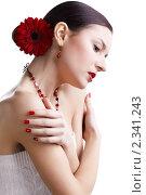 Купить «Девушка с цветком герберы в волосах», фото № 2341243, снято 17 декабря 2010 г. (c) Serg Zastavkin / Фотобанк Лори