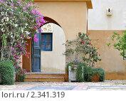 Купить «Дверь во двор. Египет», фото № 2341319, снято 30 декабря 2010 г. (c) Беляева Елена / Фотобанк Лори
