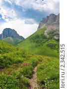 Купить «Гора Ачешбок. Краснодарский край», фото № 2342515, снято 2 июля 2010 г. (c) Оксана Гильман / Фотобанк Лори