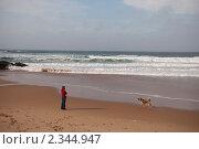 Девушка с собакой на берегу моря. Стоковое фото, фотограф Svetlana Yudina / Фотобанк Лори