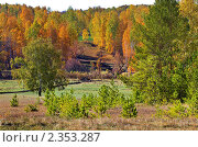 Осень. Стоковое фото, фотограф Бусыгин Борис / Фотобанк Лори