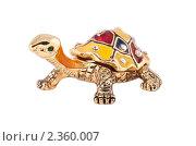 Купить «Фигурка черепахи», фото № 2360007, снято 23 января 2011 г. (c) Никончук Алексей / Фотобанк Лори
