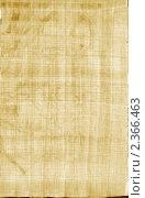 Купить «Натуральный фон, папирус», иллюстрация № 2366463 (c) ElenArt / Фотобанк Лори
