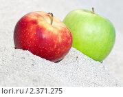 Пара яблок. Стоковое фото, фотограф Natalie Anakonda / Фотобанк Лори