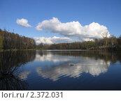 Кузьминский пруд. Стоковое фото, фотограф Маркова Елена / Фотобанк Лори