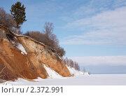 Купить «Одинокая ель на обрывистом берегу замерзшей реки», фото № 2372991, снято 6 марта 2009 г. (c) Александр Максимов / Фотобанк Лори