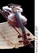 Купить «Скрипка», фото № 2373187, снято 19 ноября 2006 г. (c) Юлий Шик / Фотобанк Лори