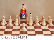 Король. Стоковое фото, фотограф Александр Зубарев / Фотобанк Лори