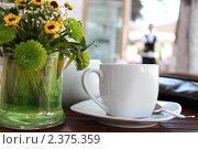 Чашка чая в летнем кафе. Стоковое фото, фотограф Рыков Юрий / Фотобанк Лори