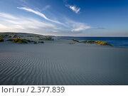 Купить «Закат в дюнах. Куршская коса», фото № 2377839, снято 7 июля 2010 г. (c) Артём Сапегин / Фотобанк Лори