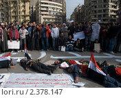 Купить «Революция в Египте», фото № 2378147, снято 20 ноября 2018 г. (c) nadegdaf / Фотобанк Лори