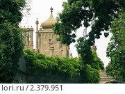 Воронцовский дворец в зелени (2009 год). Редакционное фото, фотограф Ольга Дудина / Фотобанк Лори