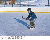 Купить «Ребенок в коньках с клюшкой», фото № 2383311, снято 27 февраля 2011 г. (c) Игорь Момот / Фотобанк Лори