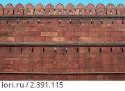 Купить «Архитектура Индии. Фрагмент ограждения Красного форта», фото № 2391115, снято 9 декабря 2009 г. (c) Вера Тропынина / Фотобанк Лори