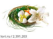 Купить «Пасхальные яйца в плоской корзинке с травой и цветком», фото № 2391203, снято 8 июля 2010 г. (c) Литова Наталья / Фотобанк Лори