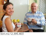 Купить «Пожилая пара пьет чай», фото № 2395403, снято 23 октября 2010 г. (c) Дарья Филимонова / Фотобанк Лори