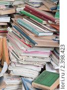 Купить «Книги - гора знаний», фото № 2398423, снято 11 марта 2011 г. (c) Королевский Василий Федорович / Фотобанк Лори