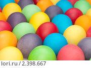 Купить «Разноцветные яйца», фото № 2398667, снято 13 февраля 2011 г. (c) Максим Лоскутников / Фотобанк Лори